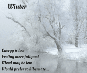 winter of your menstrual cycle